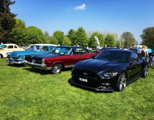 Ford Mustang Cars in the Park